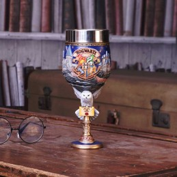 HARRY POTTER HOGWARTS SCHOOL GOBLET RESINA CALICE NEMESIS NOW