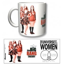 THE BIG BANG THEORY WOMEN MUG TAZZA IN CERAMICA 2BNERD