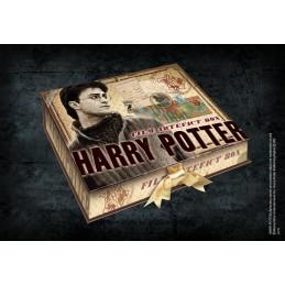NOBLE COLLECTIONS HARRY POTTER - FILM ARTEFACT BOX SET DA COLLEZIONE