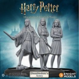 HARRY POTTER MINIATURE ADVENTURE GAME - DUMBLEDORE'S ARMY PACK