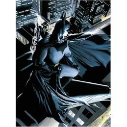 DC UNIVERSE BATMAN WATCHER GLASS POSTER IN VETRO 40 X 30 CM SD TOYS