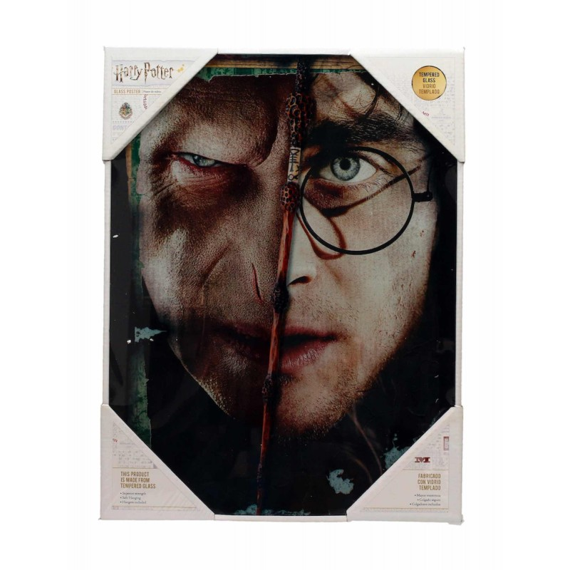 SD TOYS HARRY POTTER HALF FACE VOLDEMORT HARRY GLASS POSTER IN VETRO 40 X 30 CM