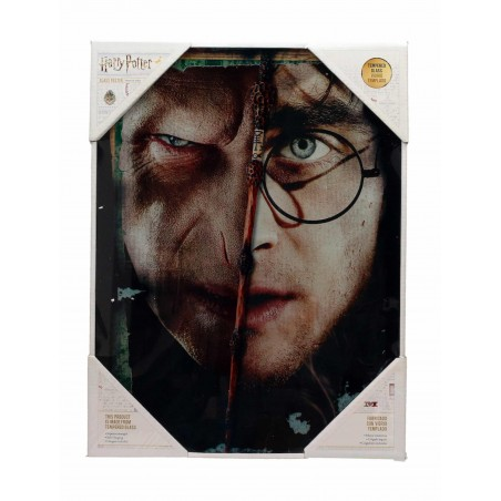 HARRY POTTER HALF FACE VOLDEMORT HARRY GLASS POSTER IN VETRO 40 X 30 CM
