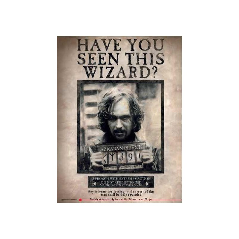HARRY POTTER HAVE YOU SEEN THIS WIZARD GLASS POSTER IN VETRO 40 X 30 CM