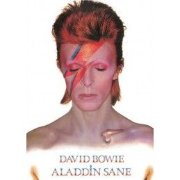DAVID BOWIE ALADDIN SANE TIN SIGN TARGA METALLO 15X21CM HALF MOON BAY