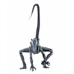 ALIEN VS PREDATOR ARCADE - ARACHNOID ALIEN ACTION FIGURE NECA