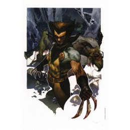 WOLVERINE AND SABERTOOTH LYTHOGRAPHY LITOGRAFIA BY SIMONE BIANCHI 43 X 33 CM