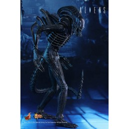 "ALIENS 12"" ALIEN WARRIOR XENOMORPH 35CM ACTION FIGURE HOT TOYS"