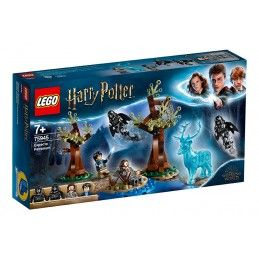 LEGO HARRY POTTER EXPECTO...