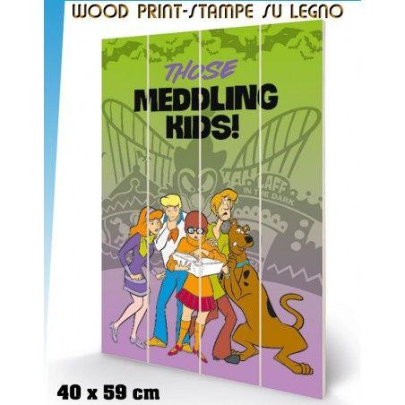 SCOOBY DOO MEDDLING KIDS WOOD PRINT STAMPA SU LEGNO 40 X 60 CM