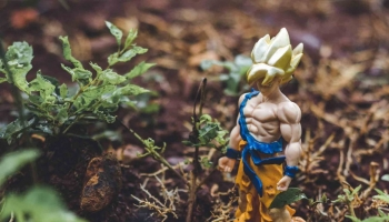 Banpresto Dragon Ball and One Piece: the most incredible statues